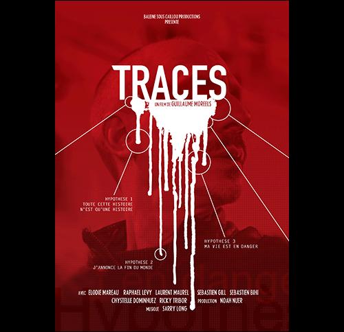 VI_TRACES3